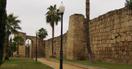 Miniatura Alcazaba Arabe